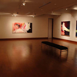 Installation View, Cambridge Galleries: Preston.